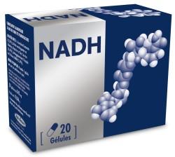NADH_new